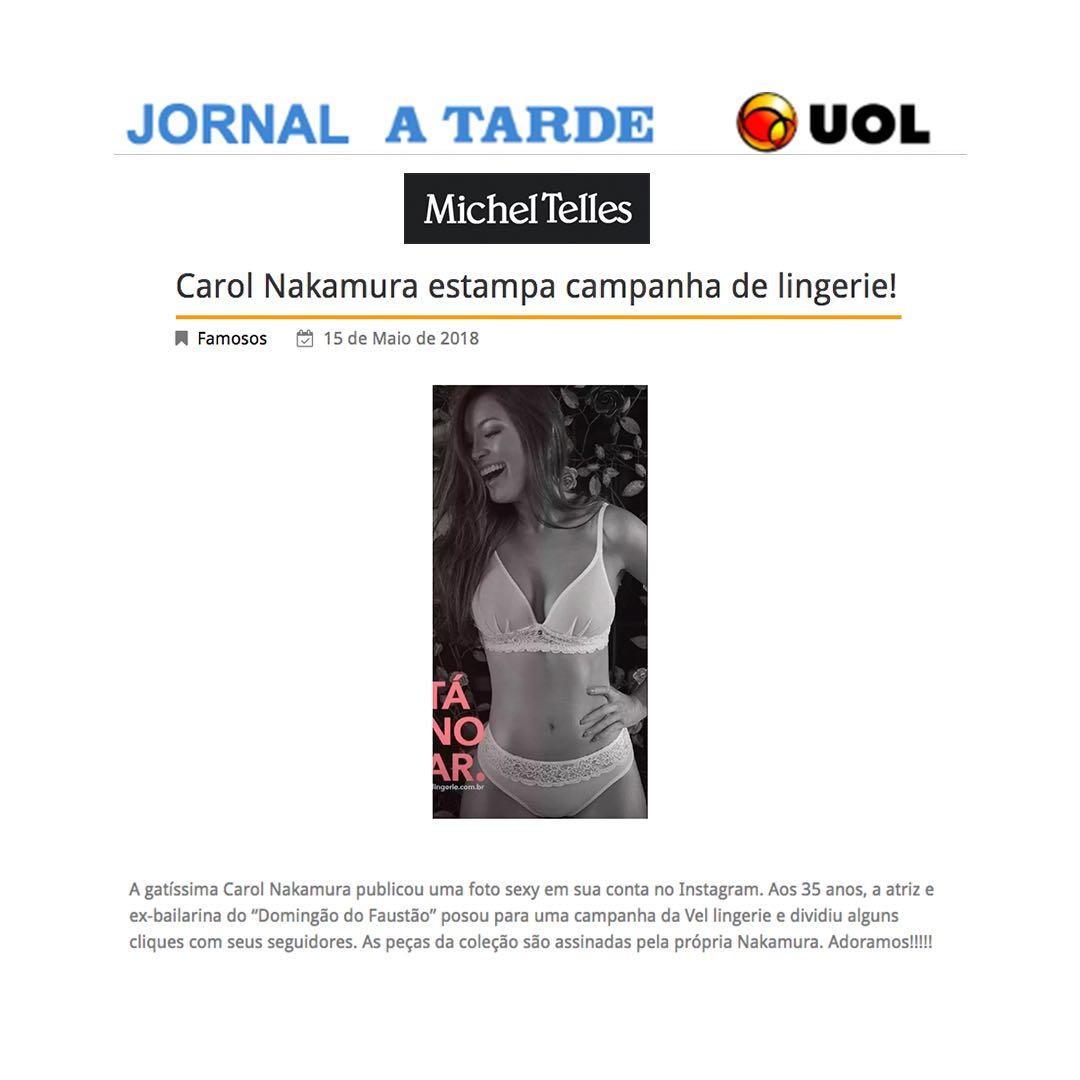Portal Michel Telles
